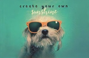 Chic.Mic anti-skimpas 'create your own sunshine'