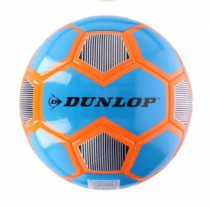 Nederlands Hollandse leeuwtaille Football 5