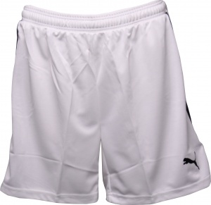 Puma Evospeed Dames Indoor Short Wit