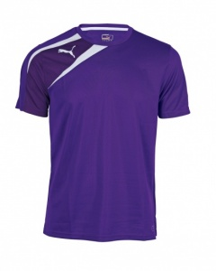 Puma Sportshirt Spirit Training heren paars/wit